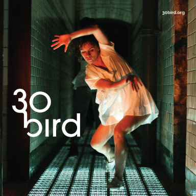 30bird-portfolio-03