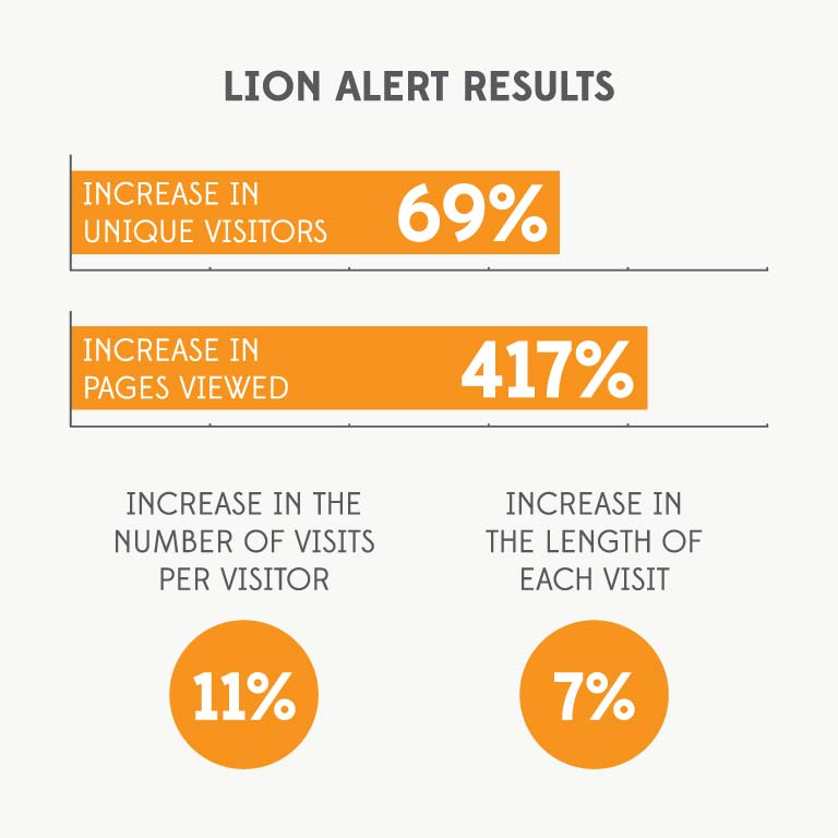 lion-portfolio-03